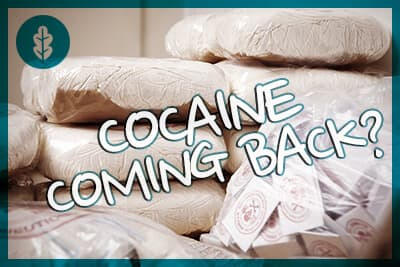 Don't Call It a Comeback: Cocaine Has Been in South Florida for Years